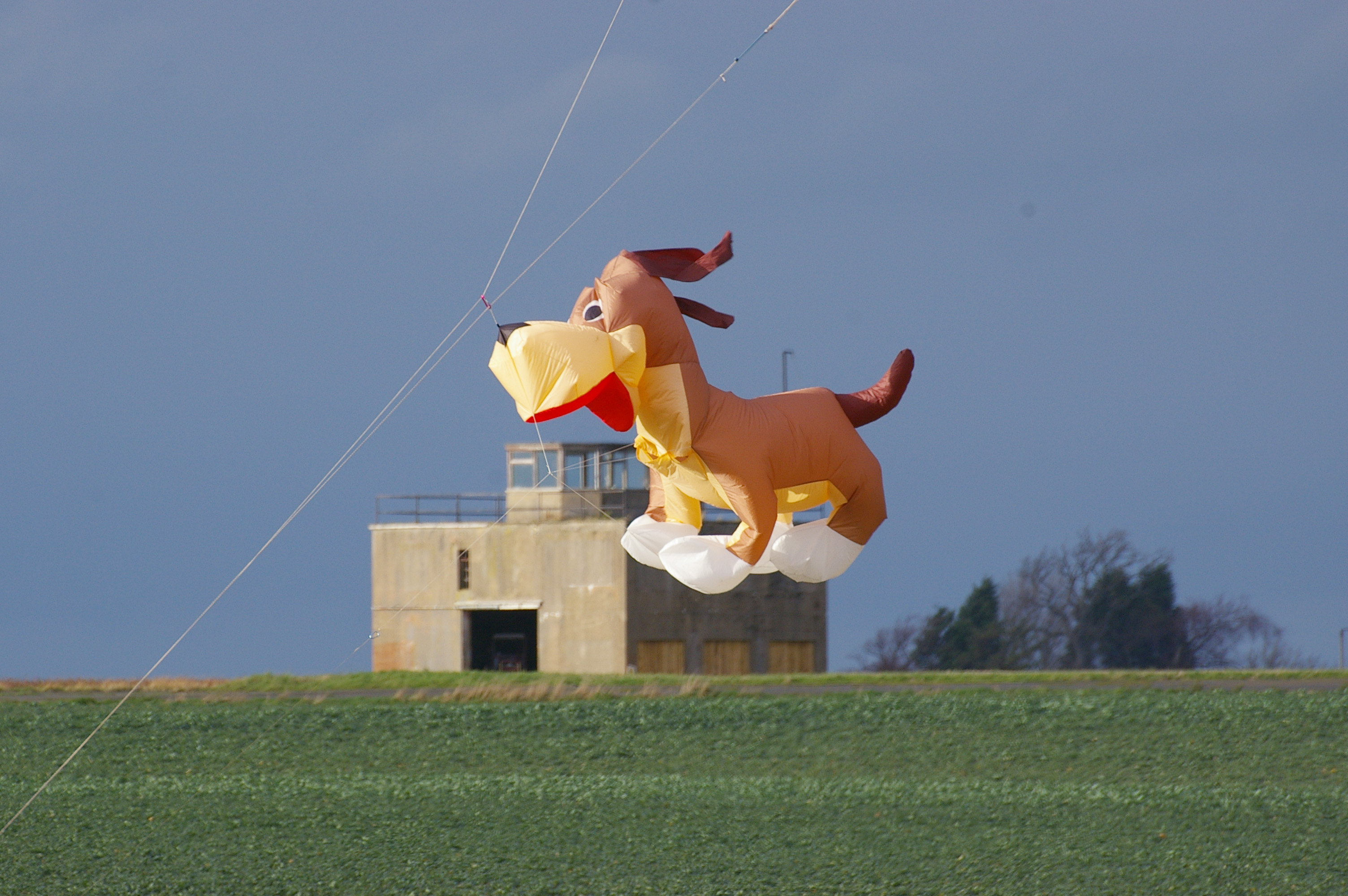Kite dog flying over East Fortune control tower