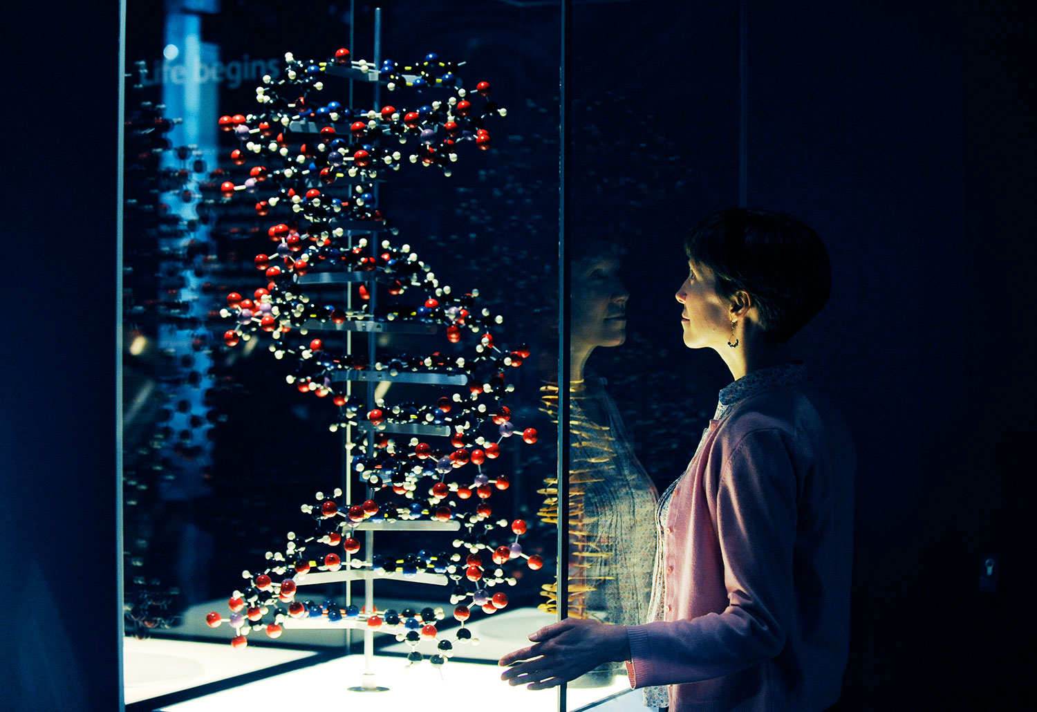 Earth In Space Dna Model