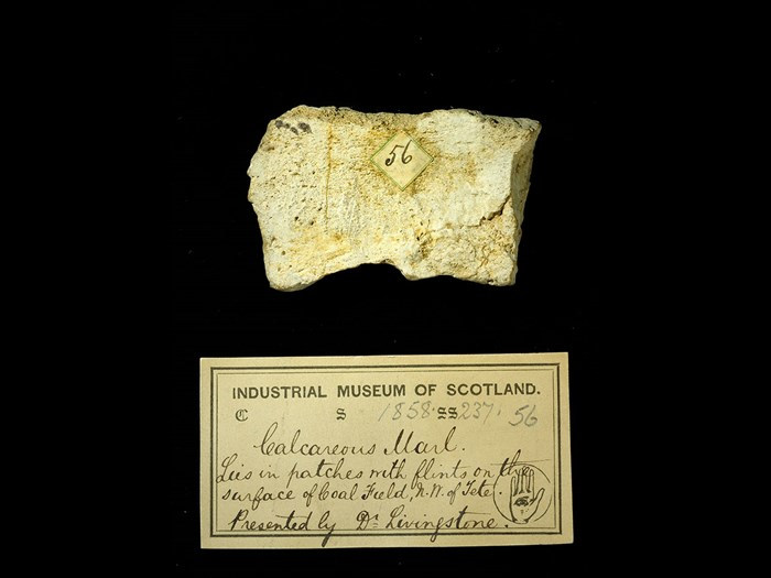 Specimen of calcareous marl with 19th century museum label: 'Calcareous marl. Lies in patches with flints on the surface of coal field, NW of Tete. Presented by Dr Livingstone.'