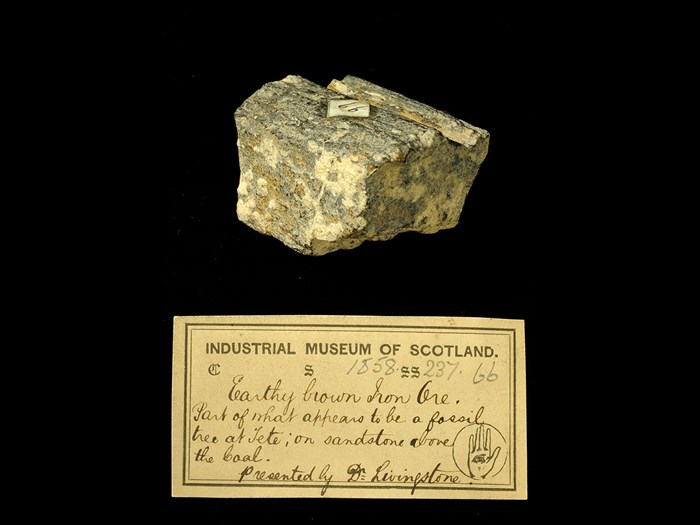 Specimen of iron ore with 19th century museum label: 'Earthy brown iron ore. Part of what appears to be fossil tree at Tete: in sandstone above the coal. Presented by Dr Livingstone.'