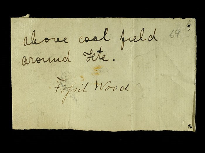 Livingstone's note written in the field for the fossil wood: 'Above coal field around Tete.'