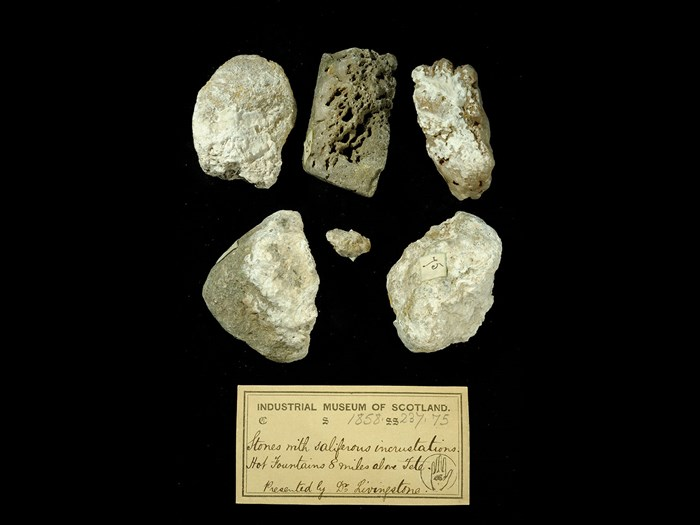 Specimens of rocks with incrustations with 19th century museum label: 'Stones with saliferous incrustations. Hot fountains 8 miles above Tete. Presented by Dr Livingstone.'