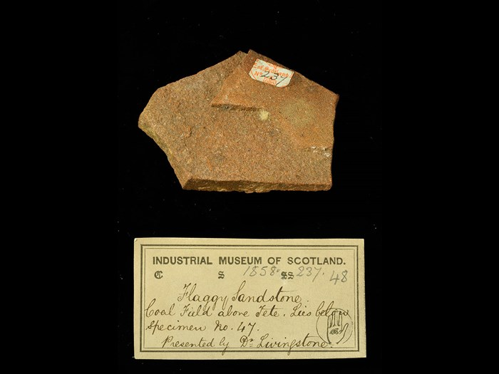 Specimen of flaggy sandstone with 19th century museum label: 'Flaggy sandstone. Coal field along Tete. Lies below specimen no. 47. Presented by Dr Livingstone.'