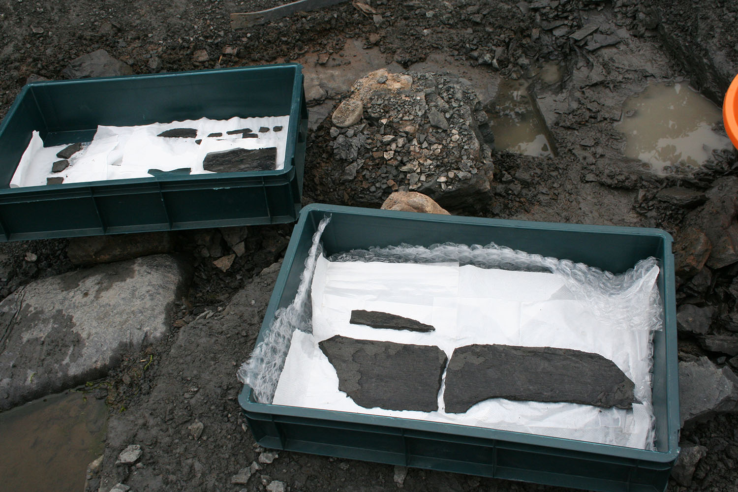 Selected fossils are carefully packed away and removed for further study.