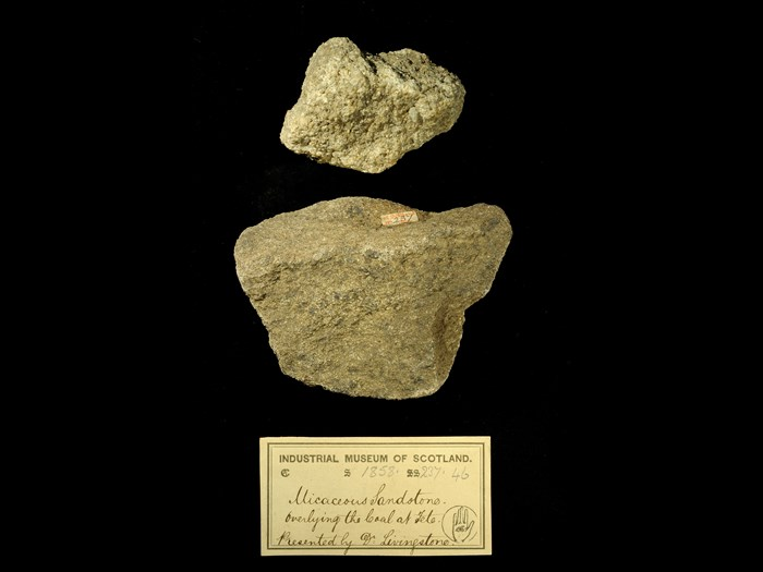 Specimen of micaceous sandstone with 19th century museum label: 'Micaceous sandstone. Overlying the coal at Tete. Presented by Dr Livingstone.'