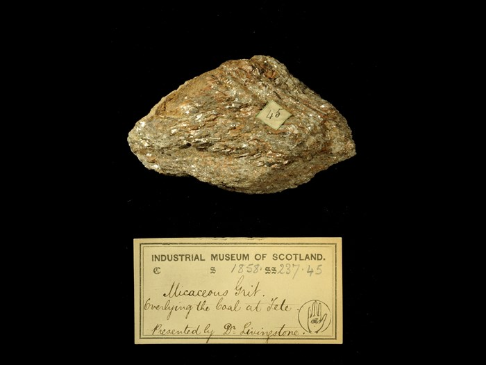 Specimen of micaceous grit with 19th century museum label: 'Micaceous grit. Overlying the coal at Tete. Presented by Dr Livingstone.'