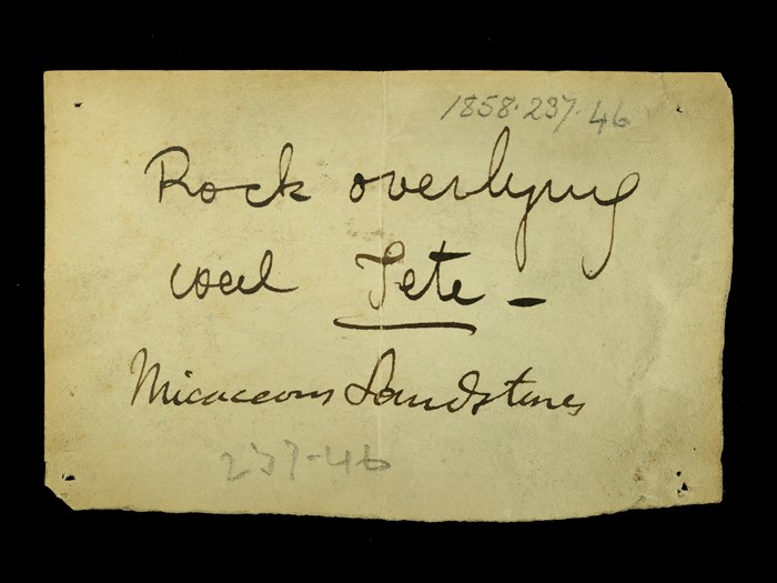 Livingstone's note written in the field for the micaceous sandstone: 'Rock overlying coal Tete.'