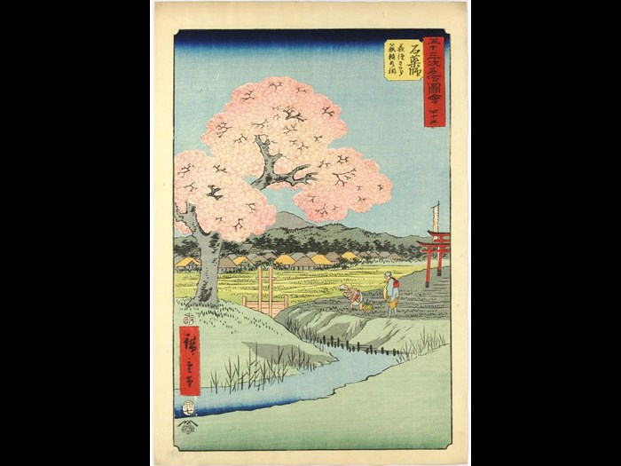 Colour woodblock print 45 entitled Ishiyakushi: Yoshitsune sakura Noriyori no hokora (Ishiyakushi: Yoshitsune's Cherry Blossoms, Noriyori Small Shrine) from the series Gojūsan tsugi meisho zue (Famous Places Along the 53 Stations [of the Tōkaidō] Illustrated) depicting two figures working in a field, with Yoshitsune's cherry tree in bloom across a small stream, and the torii for Noriyori shrine visible behind: Japan, by Utagawa Hiroshige, 1855.