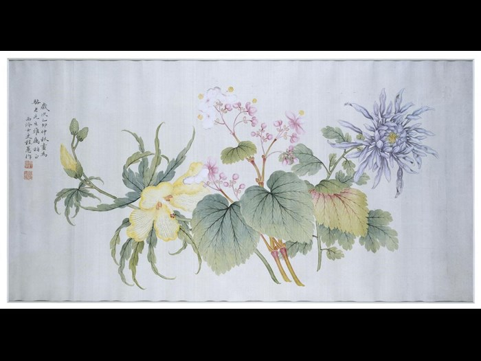 Handscroll painting of chrysanthemums, in ink and white paint on paper: China, by Kang Tongwei. Collected by Sir James Stewart Lockhart.