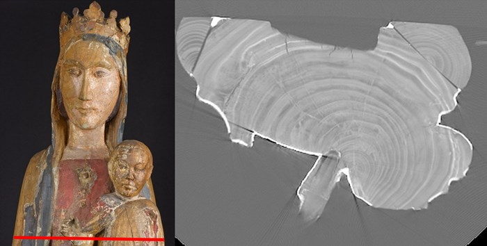 Cross sectional images of the CT scan allowed us to look at the ring pattern of the tree as well as construction techniques. The red line indicates the position of this cross section.