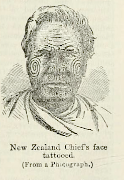 New Zealand Chief's face tattooed, from First Edition, volume 9, page 313, 1867.