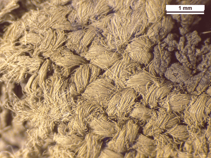 Microscope image of the woven fabric 'plug' found inside the socket of the Pyotdykes spearhead.