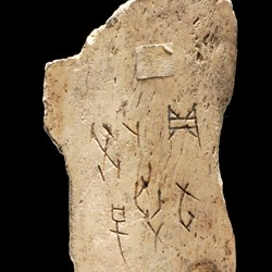 Oracle bone of tortoise plastron or ox scapula, with incised script recording divination: China, Henan Province, near Anyang, Yinxu, late Shang dynasty, c. 1200-1050 BC.