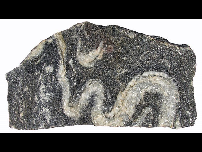 Contorted limestone, from Allt na Gonolan, Inverness-shire. Sometimes a rock can fracture if it is struck but if it is warmed and put under gradual pressure it can bend and contort. This limestone has been slowly contorted so the white vein which was originally nearly straight now curves around like a snake.
