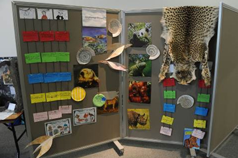 Display by pupils at Knightsridge Primary