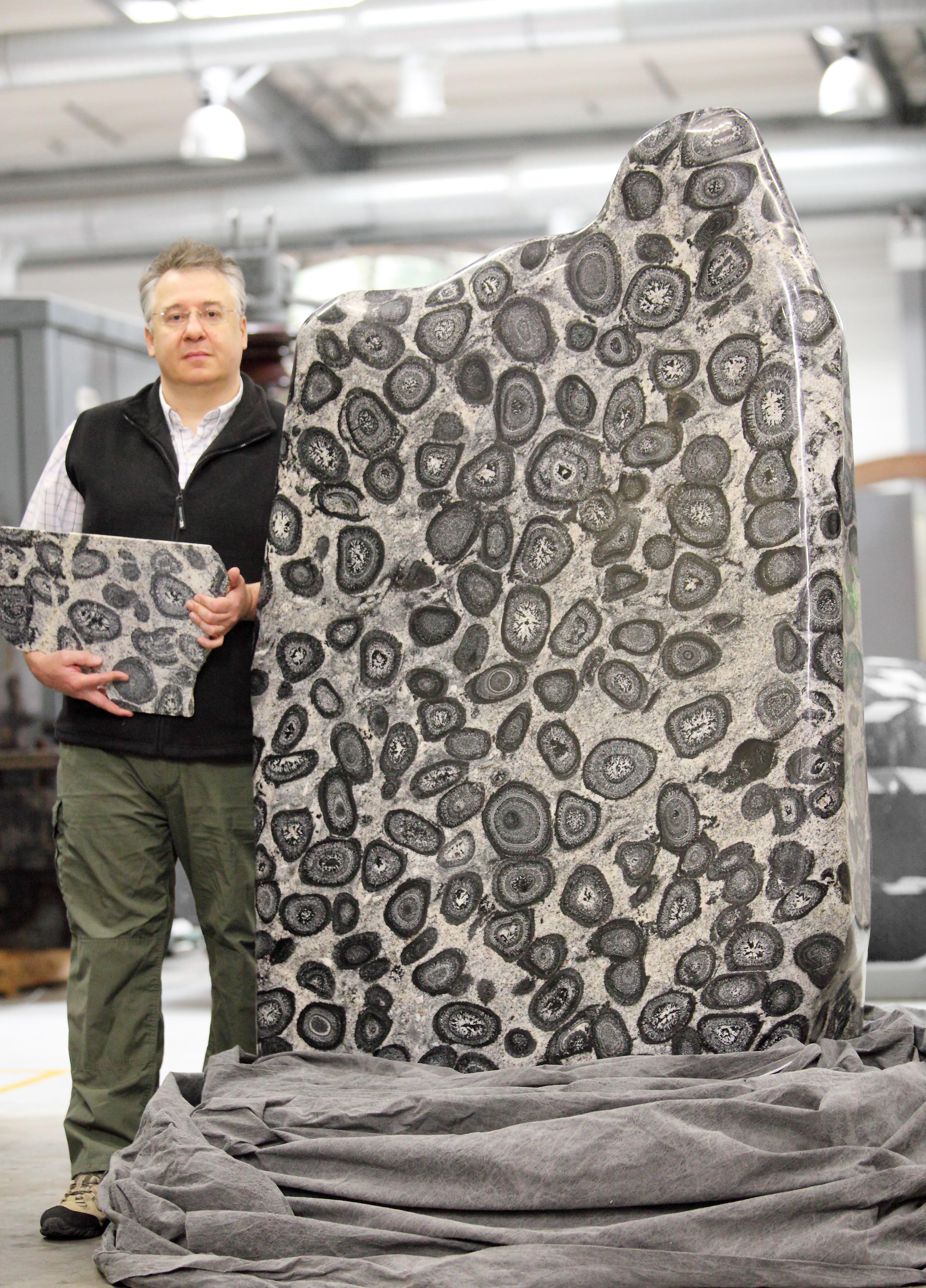 Simon Howard, Curator of Petrology, with the stunning specimen of orbicular granodiorite