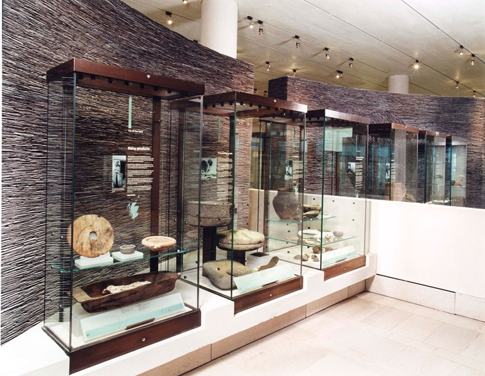 Objects in cases in the Early People gallery